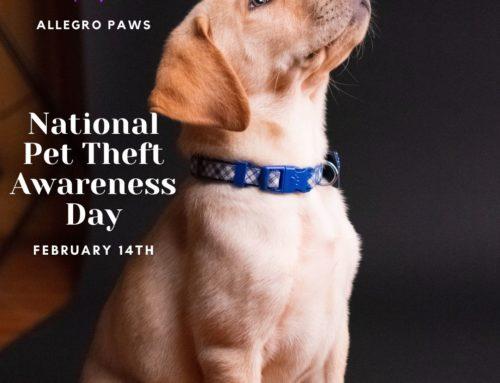 National Pet Theft Awareness Day