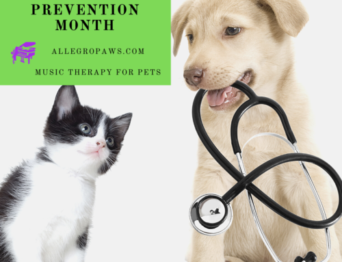 March: Pet Poison Prevention Month